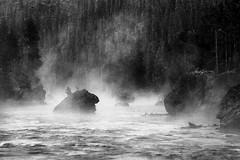 Morning Steam on the Firehole River (chrislon28) Tags: canon ftb landscape river fireholeriver yellowstone nationalpark steam rocks trees canonfilm longexposure 35mm kodak plusx blackandwhite film fd