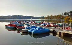 Losheim am See (O.Hahn Photography) Tags: losheimamsee herbst autumn water wasser see lake mirror spiegelung saarland saarhunsrücksteig wandern hiking nature natur