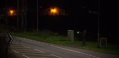 The Wyberton Wave (Wulfruna) Tags: 6m08 grid 56078 colas steel freight railway diesel locomotive bostonsteel uk england wyberton lamp night