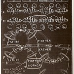 Walter Russell Chart (49)