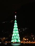 img_0668 (Ricardo Jurczyk Pinheiro) Tags: reflexo iluminação árvoredenatal lagoarodrigodefreitas riodejaneiro