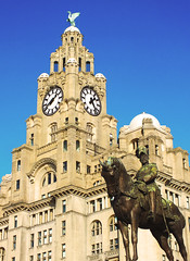King Edward Vii | Royal Liver Building (cawsalex) Tags: liverpool albert dock king edward vii liver building river mersey winter bird royal family