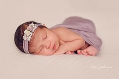 Brainerd Newborn Photography (Stacy Pederson Photography) Tags: newbornphotos newbornphotography newbornphotographer canonmarkiii sigma50art