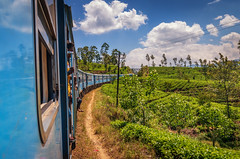 Tea train (davecurry8) Tags: srilanka train tea highlands