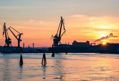 Gothenburg harbour (Fredrik Lindedal) Tags: cranes sky skyline sunlight sun sweden sverige sunset glow water siluette bridge lindedal gothenburg göteborg göteborgshamn götaälv river visitsweden