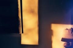 Negative0-02-1A(1) (simona_stoeva) Tags: canon ae 1 film 35mm analog sunset interior plants home sun light reflection shadow