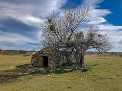 Chozo (thoskar) Tags: chozo orbaneja castillo burgos piedra landscape nature paisaje árbol refugio sky