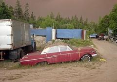 Old Merc in Junkyard, Bayswater Nova Scotia, 1991. (Jon Archibald) Tags: v750 epson automobile scrap junk scrapyard junkyard car abandoned 620 kodak novascotia fire forest monterey mercury