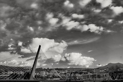 Ponte dos tirantes (Jano_Calvo) Tags: clouds bridge pontevedra tirantes strings river lerez blackandwhite city architecture mirrorless sony a6000 ilce alpha sigma 30mm art