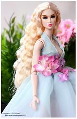 Eden (enigma02211) Tags: reliablesourceedenblair integritytoys fashionroyalty dollphotography fashiondoll 16scale portrait nuface fashion
