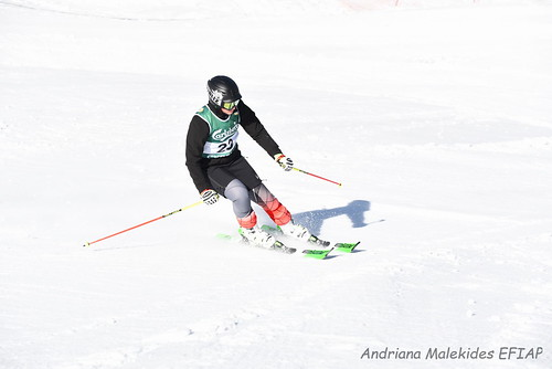 Alpine Races I & II Feb 2019_04