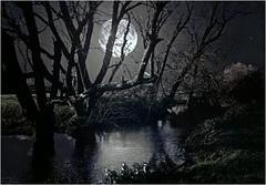 """Moonlit river"" (martinshore) Tags: moon night moonlitriver moonlight river moonlit"