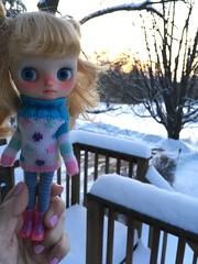 Northeast Winter Dusk (blythecatalyst) Tags: sweater winter party qtea macaron jujubes doll custom middie blythe
