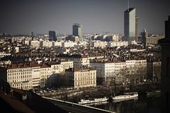 city (revoli photo) Tags: lyon slack slackline bateau soane rhone parc song city sun bird