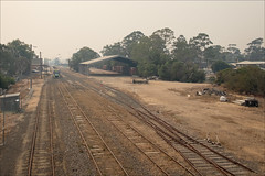 bairnsdale-2768-ps-w (pw-pix) Tags: station railwaystation trainstation vline wagons goodsyard tracks rails sleepers ballast points switches poles lights buildings sheds shed platform vlocity grass weeds gravel dirt rubbish loadingramp canopy wires weird strange unusual smoke smokey haze orange red cloud cloudy hazy dull dark eerie ash dust structures fence gate trees deserted empty eastgippslandbushfires gippslandbushfires smokefrombushfires bairnsdalestation bairnsdalerailwaystation shotfrompedestrianbridge macarthurstreet dalmahoystreet bairnsdale eastgippsland gippsland victoria australia peterwilliams pwpix wwwpwpixstudio pwpixstudio