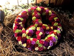 Peace Wreath (baccarati) Tags: flowershow phs philadelphiaflowershow flowers convention showcase philly tradeshow philadelphia pennsylvaniaconventioncenter pennsylvania carnations wreath peace peacesign peacesymbol