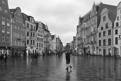 Rostock (Renate R) Tags: rostock winter historiccity mecklenburgvorpommern germany hansestadtrostock regen rain innamoramento