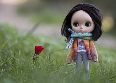 """Blythe Tokyo • <a style=""""font-size:0.8em;"""" href=""""http://www.flickr.com/photos/128064969@N05/46716892301/"""" target=""""_blank"""">View on Flickr</a>"""