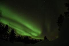 Aurora borealis north Norway (stevebarroso) Tags: arctic mountain sky light green northernlights snow north auroraborealis
