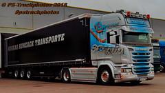 IMG_6237 SCANIA_V8 Topline airbrush Lackkunst_Niedergesäß  Andreas_Konzack Konzack_Transporte pstruckphotos PS-Truckphotos_2018 (PS-Truckphotos #pstruckphotos) Tags: transportlastbiltrucklkwpstruckphotoskonzack scaniav8 topline airbrush lackkunstniedergesäs andreaskonzack konzacktransporte pstruckphotos pstruckphotos2018 truckphotos truckfotos truckspttinf truckspotter truckphotography lkwfotografie lkwfotos truckpics lkwpics lastwagen lkw truck lorry auto