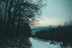 KRIS7580 (Chris.Heart) Tags: túra tél természet winter hiking forest pilis
