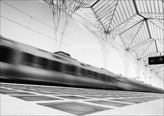 F_MG_2999-BW-2-Canon 6D2-Canon 16-35mm-May Lee 廖藹淳 (May-margy) Tags: maymargy bw 黑白 火車 脈動 模糊 散景 街拍 線條造型與光影 天馬行空鏡頭的異想世界 心象意象與影像 幾何構圖 點物 東方火車站 台灣攝影師 地坪 fmg2999bw2 train motion blur bakeh trainstation lisboa portugal canon6d2 canon1635mm maylee廖藹淳 streetviewphotography linesformandlightandshadow mylensandmyimagination natural coincidence thru lenshuman geometrytaiwan photographer