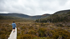 Waterfall Valley, The Overland Track