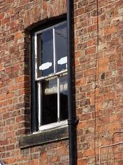 Teddy Boy Window! (Glass Horse 2017) Tags: brylcreemedbackhair openmouth eyes face drainpipe bricks teddyboy window windowwednesday