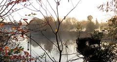 2017-11-17 | 02 | misty (Mark & Naomi Iliff) Tags: river thames caversham sunrise dawn mist