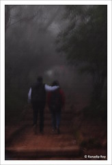 Walk (RanadipRoy) Tags: walk steps stairs trees woods fog foggy mist misty people couple man woman canvas filter nature outdoor nandihills bangalore india