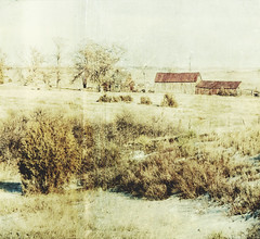 i once knew a farmer (jssteak) Tags: canon afternoon farm rural winter snow barns brush aged distressed grung hdr vintage