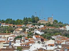 Vista para o Castelo de Castelo Branco (Sofia Barão) Tags: portugal beira baixa castelo branco