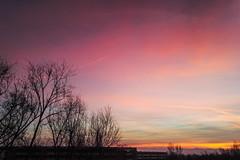 morning sky / @ 5 mm / 2019-02-07 (astrofreak81) Tags: clouds sunrise sun wolken sonnenaufgang sonne sky himmel heaven light dawn redsky morning abend red orange dresden 20190207 astrofreak81 sylviomüller sylvio müller