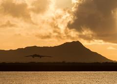 190114-F-WU042-0003 (Whiteman AFB) Tags: usaf whiteman b2 pacom pacaf stracom air force hickamairforcebase hawaii unitedstates us