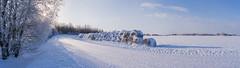 2019_01_21---11_48_00---DSC04343_panor (paavoeensalu1) Tags: strawbale road snow winter estonia tree frost