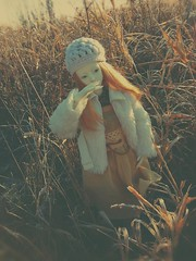 frozen (tarengil) Tags: zaolluv zaoll dollmore bjd abjd balljointeddoll asiandoll morigirl mori bjdmori bjdphotography dollstagram