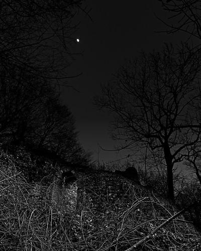 La Robertière au crépuscule