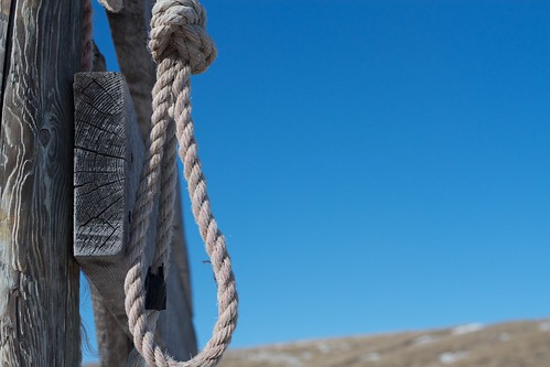 Noose, From FlickrPhotos