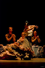 Flamenco Roots (flamencoagency) Tags: flamenco dance baile bailaores singer music spain seville andalusia travel culture tradition entertainment ballet roots flamencoballet journey history france folklore