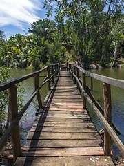 Parc Ivoloina / Парк Иволоина (dmilokt) Tags: природа nature пейзаж landscape река river dmilokt мост bridge