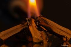 Campfire. (Digifred.nl) Tags: macromondays hotorcold digifred 2019 nederland netherlands pentaxk5 hmm macro macrophotography closeup vuur fire heet hot kampvuur campfire