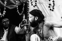 Sangam, Prayagraj Ardh Kumbh Mela, 2019 (ayashok photography) Tags: ayp8040 cwc chennaiweekendclickers kumbhmela prayag kumbh mela ardhkumbhmela triveni sangam allahabad uttarpradesh cwc701