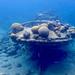 Wreck of an old tugboat, Caracasbaai, Curacao