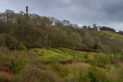 Peak Hill-1-21 (Sheptonian) Tags: somerset rural scenic landscape trees fauna grassland