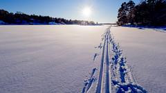 Villinki Strait, East-Helsinki, Finland. (Esa Suomaa) Tags: ice skiing winter sun helsinki finland frozen suomi jää hiihto islands forest olympusomd europe scandinavia landscape