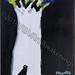 """White Tree/Jet Black Dove Study"" by SimSim K, acrylic, $35.00"