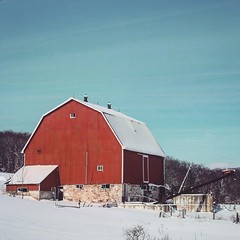 It's #CdnAgDay and what's more Canadian than a red barn covered in snow? #redandwhite #oh_canada (jessalynn_sammons) Tags: squareformat canoncanada shotoncanon canon countrylife farmview farmlife country redvsblue bluesky blue sky barn redbarn instagram ifttt