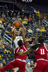 JD Scott Photography-mgoblog-IG-Michigan Women's Basketball-University of Indiana-Crisler Center-Ann Arbor-2019-13 (MGoBlog) Tags: annarbor basketball crislercenter february hoosiers jdscott jdscottphotography michigan photography sports sportsphotography universityofindiana universityofmichigan valentinesday wolverines womensbasketball mgoblog wwwjdscottphotographycommgoblogcom 2019 indiana michiganwomensbasketball wwwmgoblogcom