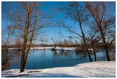 Une belle journée (Pascale_seg) Tags: paysage landscape river riverscape hiver winter étang gelé neige snow froid bleu blue tree water moselle lorraine france grandest nikon