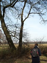 Hiking (Jeroen Hillenga) Tags: hiking wandelen wandeling natuur netherlands nederland nature natuurgebied natur drenthe